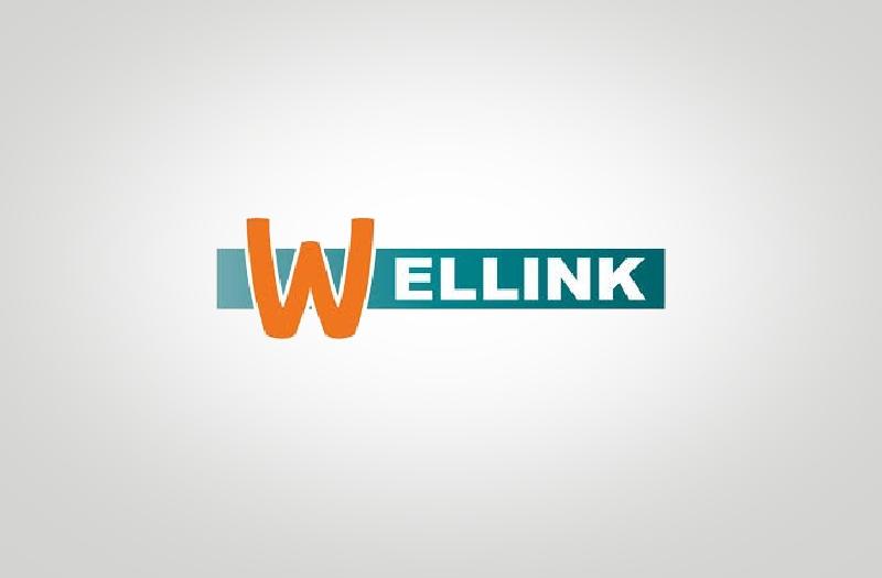 F. Wellink Lekkerkerk BV
